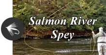 Salmon River Spey - Blog